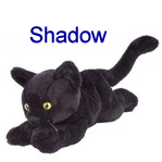Shadow Mad Lib